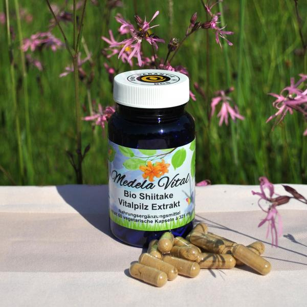 Medela-Vital Bio Shiitake Extrakt