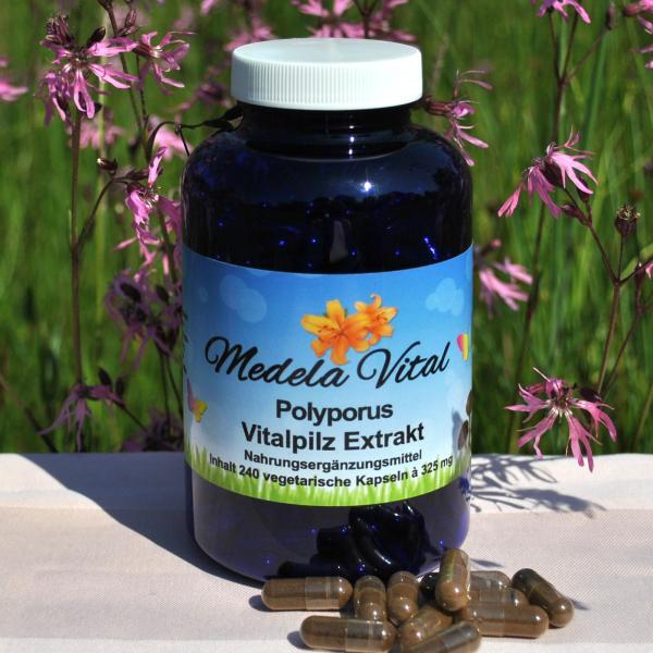 Medela-Vital Premium Polyporus Extrakt