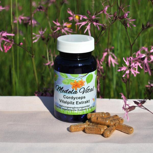 Medela-Vital Premium Cordyceps sinensis Extrakt