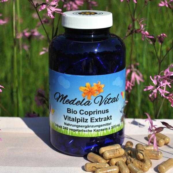 Medela-Vital Bio Coprinus Extrakt