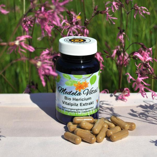 Medela-Vital Bio Hericium Extrakt