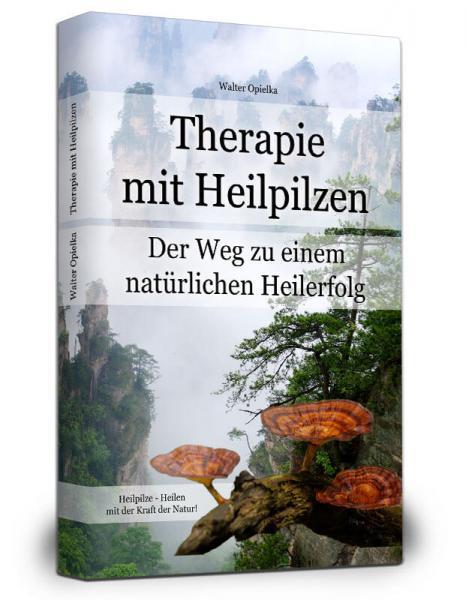 Therapie mit Heilpilzen
