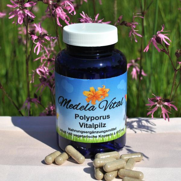 Medela-Vital Premium Polyporus
