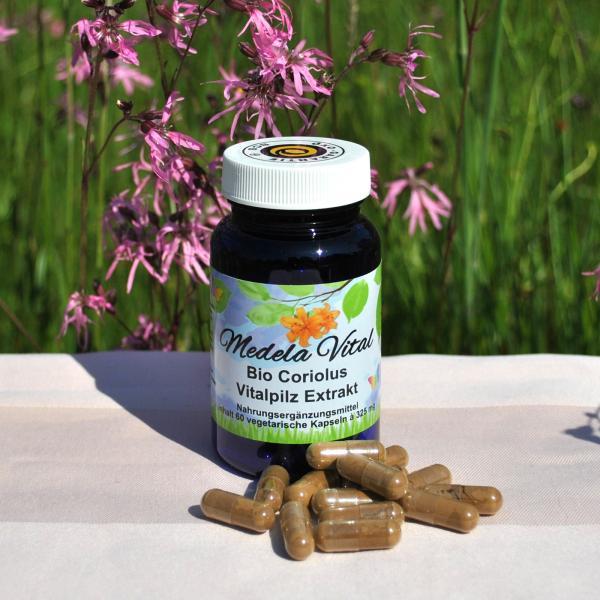 Medela-Vital Bio Coriolus Extrakt